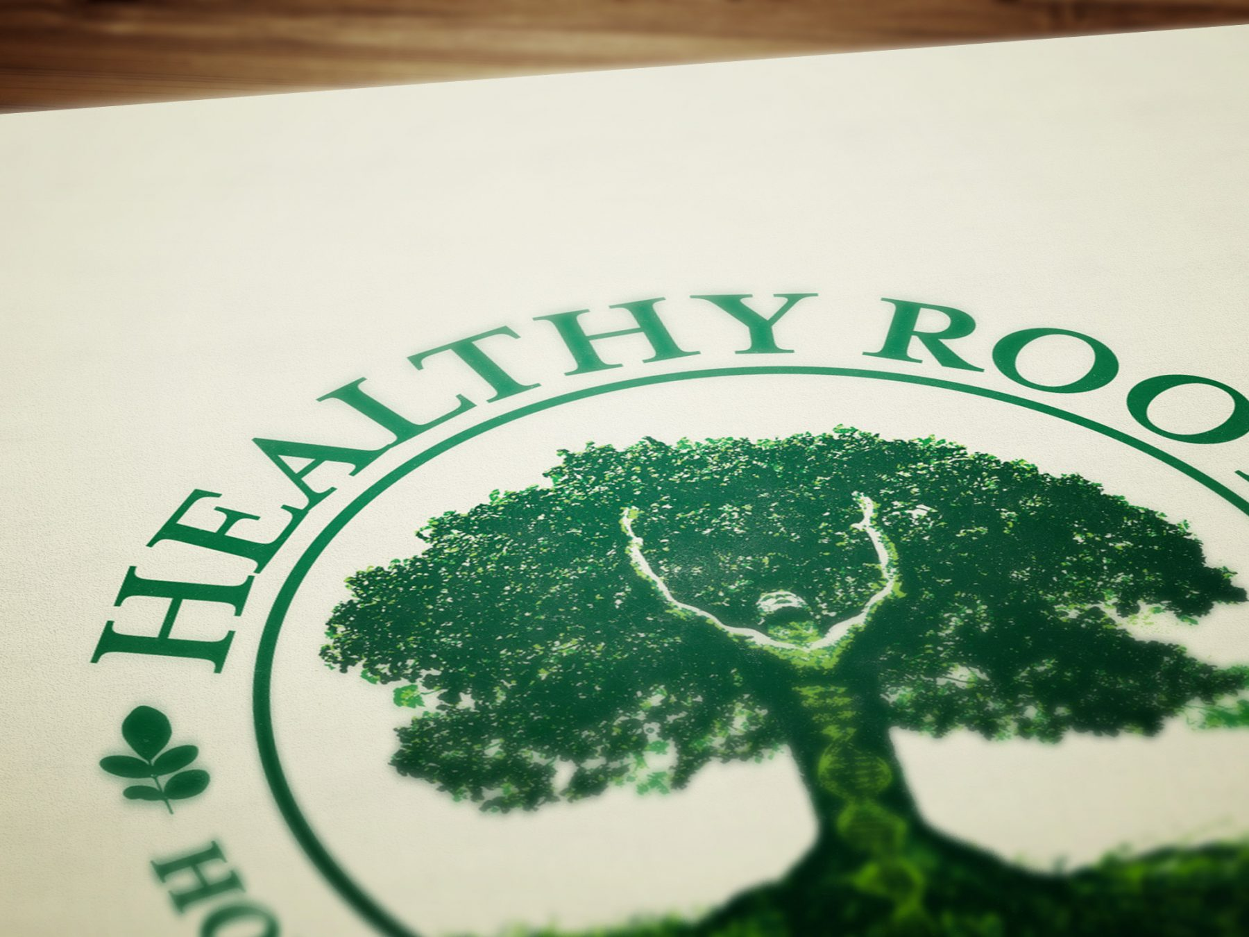 Healthy Roots Holistic Practitioners logo design and branding