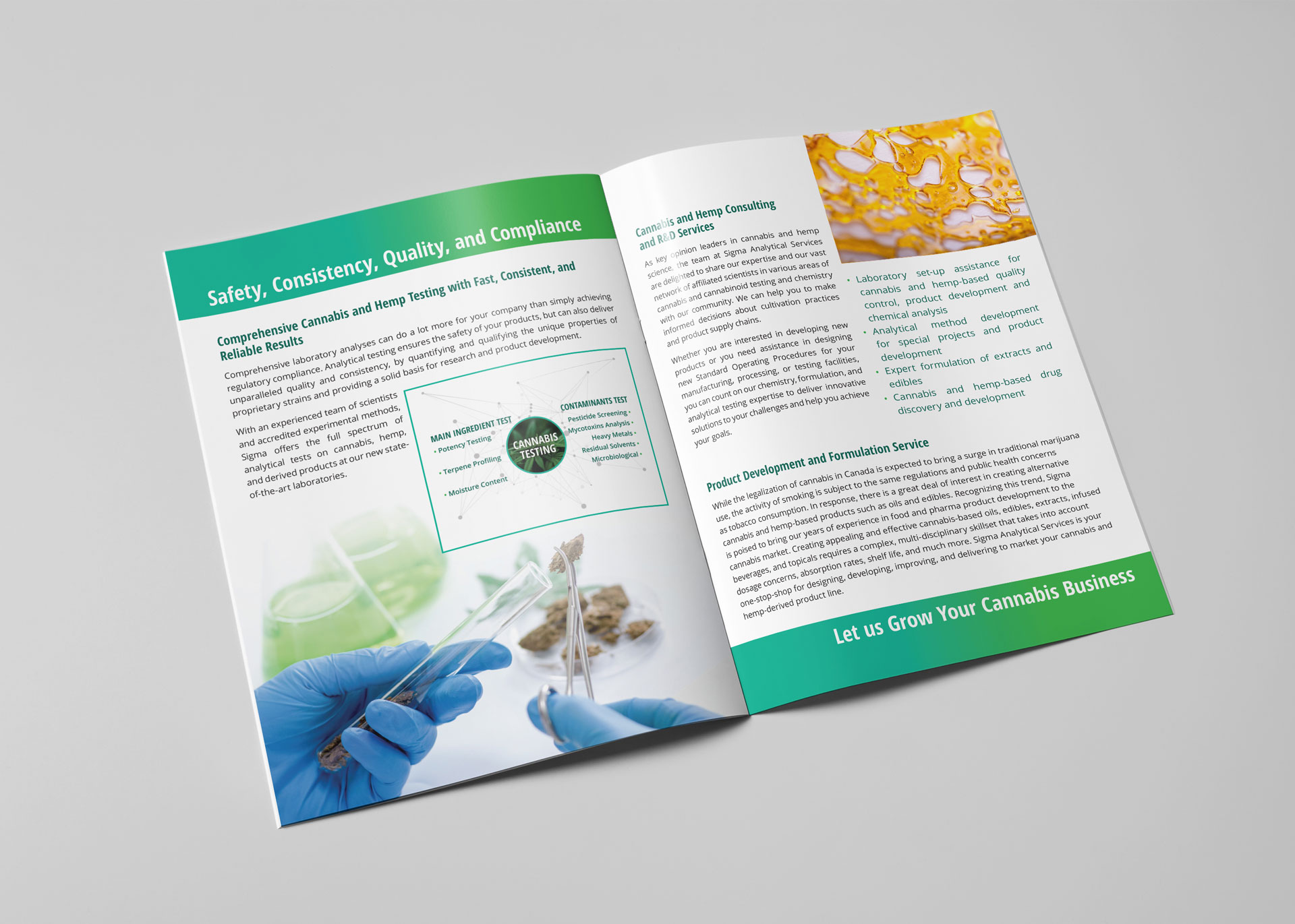 Sigma Analytical Services: Brochure Design